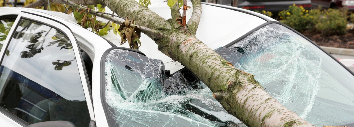 auto heeft schade door storm